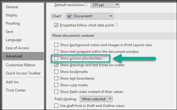 Snagit (Windows): Pasted Images Do Not Show in Microsoft